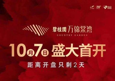 开盘倒计时,碧桂园万锦棠湾高层交5千抵2万、叠墅交2万抵4万