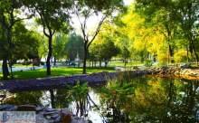 新屋岭公园