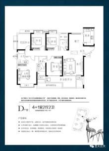 4# D户型