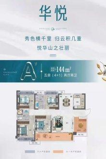 卓悦城五房户型图