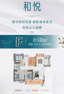 四房两室两厅户型图