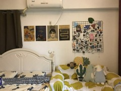 (淮川街道)金沙信息城1室1厅1卫40m²豪华装修