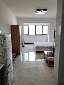 天马花园河景1室1厅1卫44m²精装修1000元每月