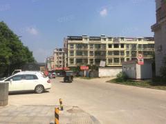 出租(集里街道)汉唐小区2室1厅1卫110平中档装修,电梯房