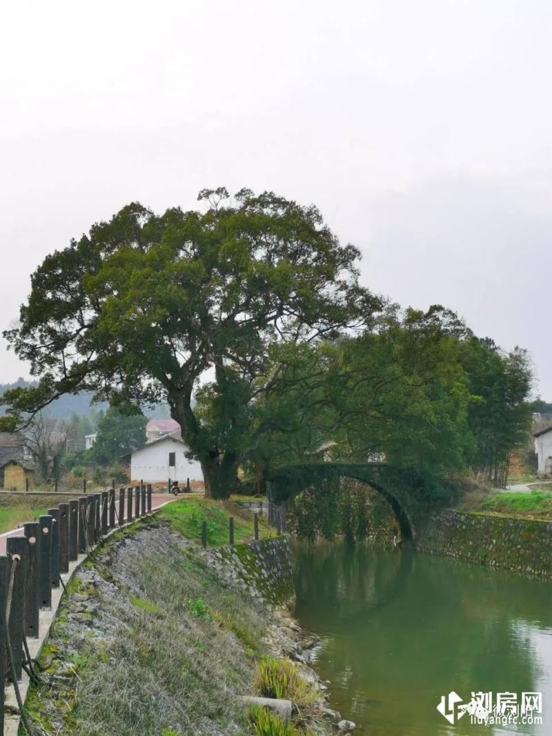 小江河中和段
